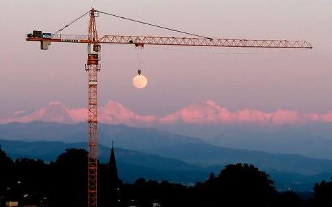 NET_moon-crane-perfect-timing