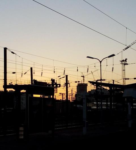 20151124 - La beauté des câbles au soleil levant