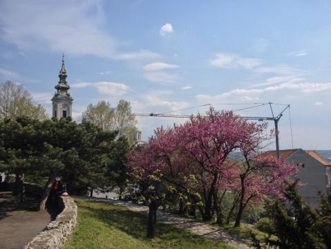 Jardins Belgrade
