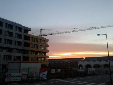Grue du matin Brest