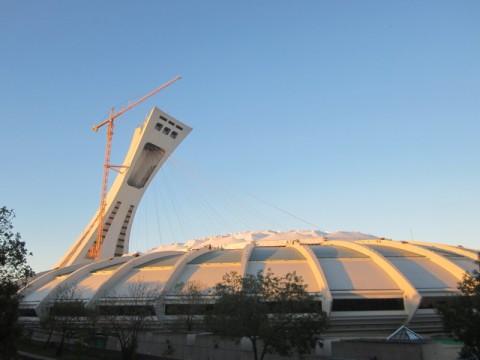 Grue olympique