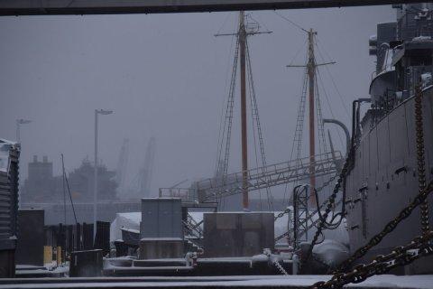 grues-du-port-dans-le-gris-blizzard