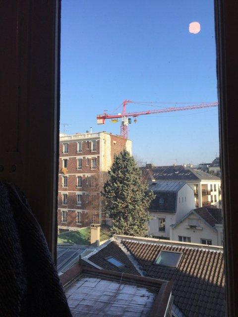 crane-morning